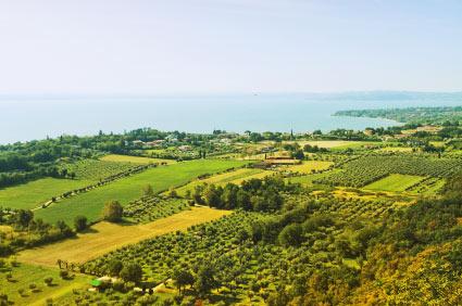 Franciacorta – Schaumwein aus der Lombardei