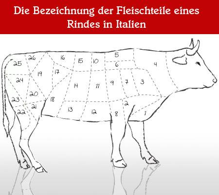 Teilstücke vom Rind