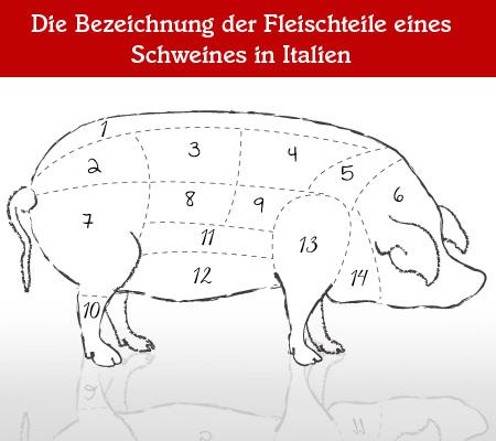 Teilstücke vom Schwein