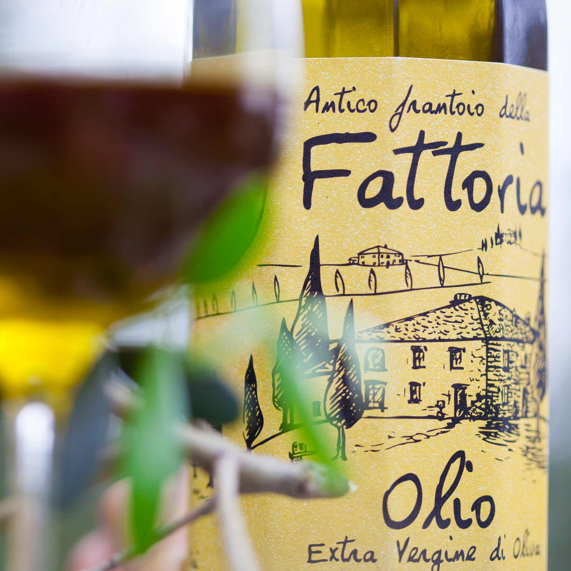 Stiftung Warentest Olivenöl 2016